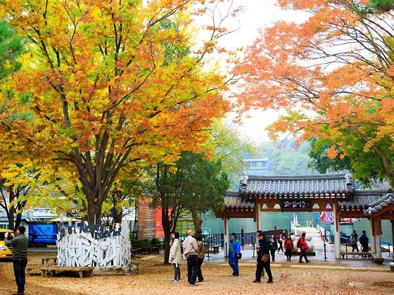 DU LỊCH HÀN QUỐC: SEOUL - ĐẢO NAMI - CÔNG VIÊN EVERLAND